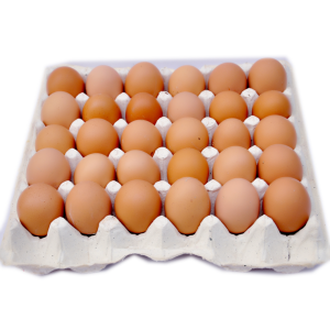 Fresh Eggs (Large)