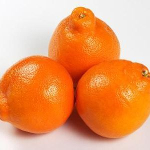 Orange (Tangelo – Small (6 pcs/kg)